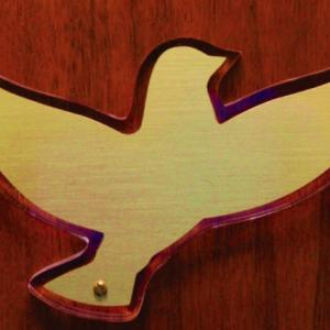 Click to Enlarge Brace on Lucite Dove